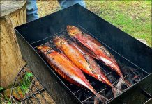 ТОП-4 сытных блюда из рыбы