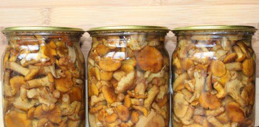Легкий супчик с курицей и грибами