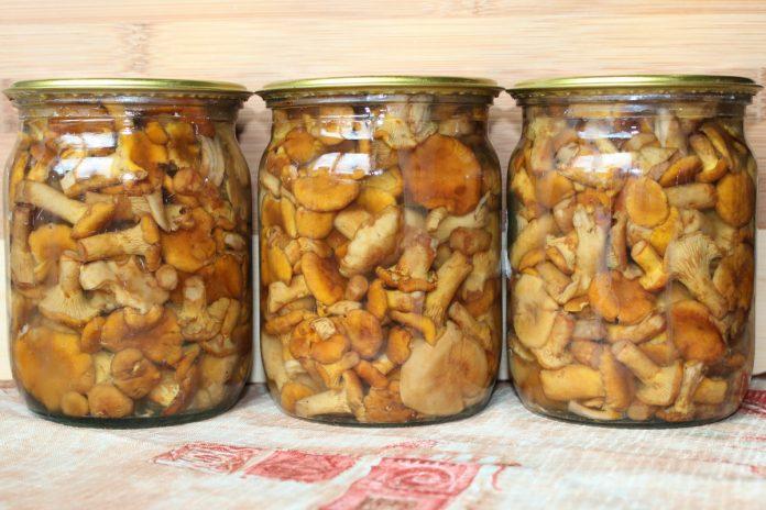 Закуски из грибов. Маринованные опята. Корейская закуска из шампиньонов.