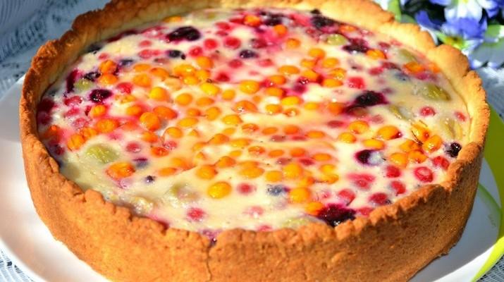Вкуснейший пирог из разных сортов слив